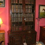 Pepys style bookcase with panelled lower doors